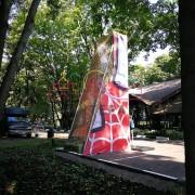 Скалодром из дерева