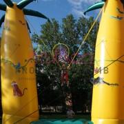 Банджи пальма акробат аренда батута