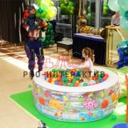 Детский сухой бассейн в аренду на праздник