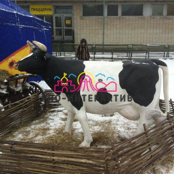 Дойная корова на Масленицу