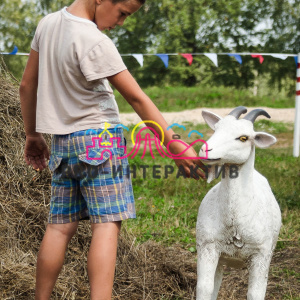 Аренда аттракциона дойная коза