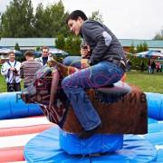 Аттракцион бык родео на праздник