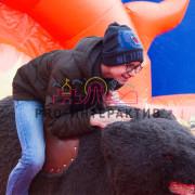 Родео Медведь в аренду на праздник