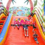 Батутный комплекс «Акуна Матата» напрокат напрокат на детский праздник