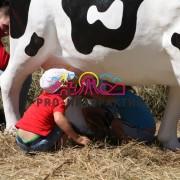 Аренда аттракционат Дойная корова