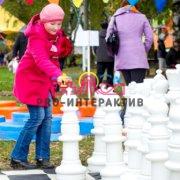 Гигантские шахматы в прокат