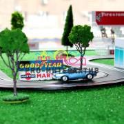 Трассовые гонки
