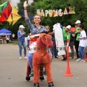 Велосипед в виде лошади в аренду на праздник