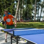Организуем соревнования по настольному теннису на вашем празднике