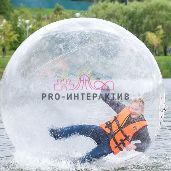 Водный шар сфера в аренду - аттракцион на летний праздник