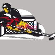 Хоккейные аттракционы