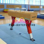 Конь гимнастический в аренду на спортивное мероприятие
