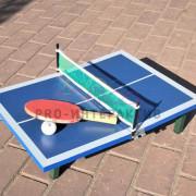 Настольный пинг-понг