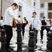 Шахматы с большими фигурмами