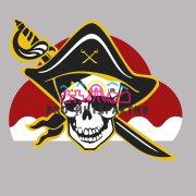 Шариковый тир пиратский