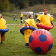 Организация игры в мяч