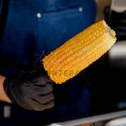 Кукуруза на мероприятие