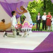 Заказать искусственный каток на свадьбу