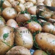 Заказать приготовление картошки на празднике