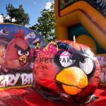 """Родео """"Angry Birds"""""""