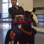 Механическая лошадка в аренду