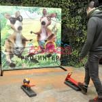Подружитесь с кенгурёнком