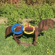 Метание колец в деревянную фигуру лошади в аренду