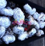 Печеный картофель на углях