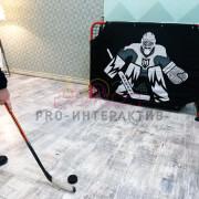 Развлечения в хоккейном стиле