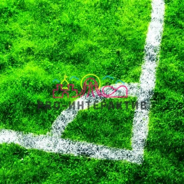 Разметка спортивных полей