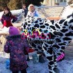Масленичные забавы: Дойная корова