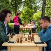 Парковые шахматы