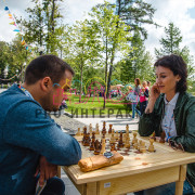 Стол для шахмат