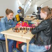 Шахматы парковые в аренду на праздник