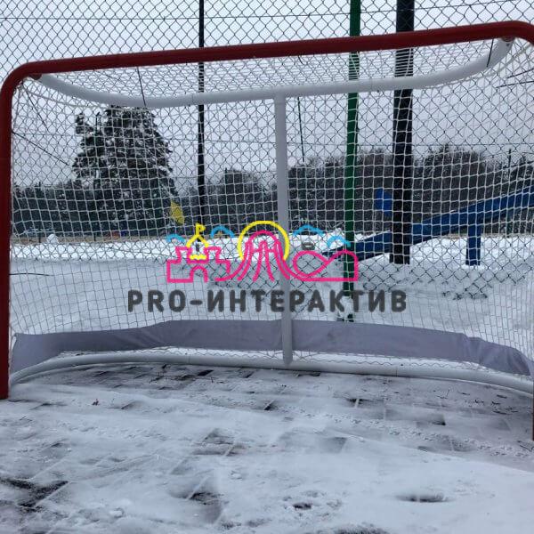 Аренда хоккейных ворот