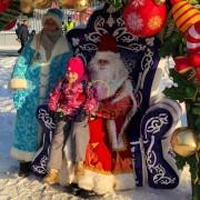Трон деда мороза в аренду на праздник