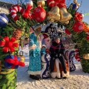 Новогодний трон в аренду на праздник 4
