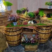 Аттракцион музыкальные фрукты и овощи в аренду на праздник