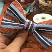 Выездной мастер класс по созданию галстука-бабочки