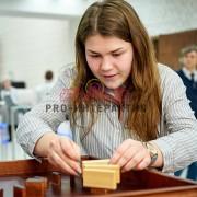 Деревянная игра доминошки в аренду